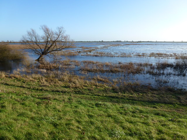 Flood water from the upper Ouse - The Ouse Washes near Welney