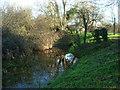 SU0597 : Crane Bridge, Thames and Severn Canal by Vieve Forward