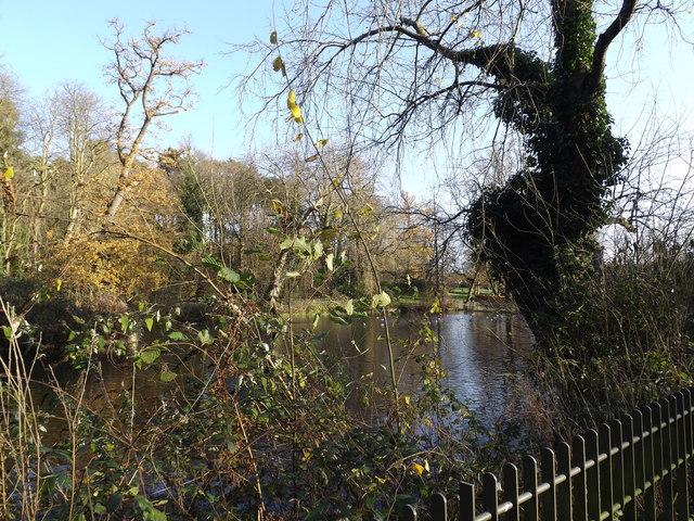 Lake in Christchurch Park