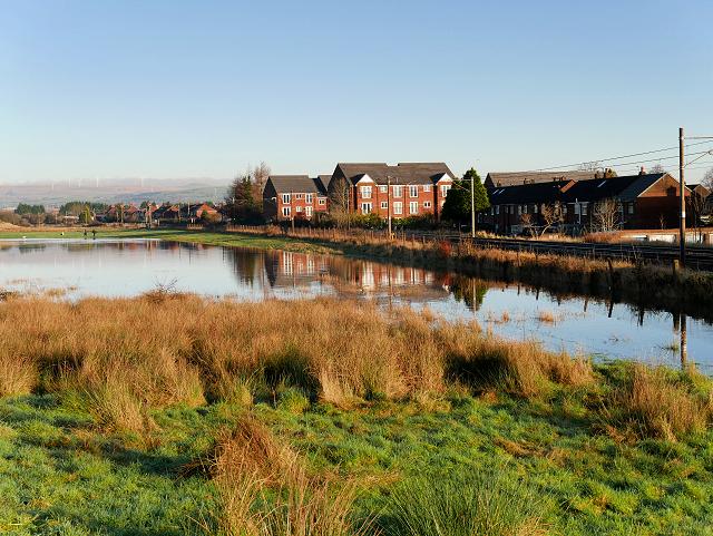 Flooded Field near Warth