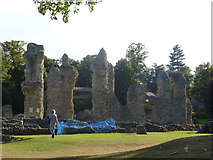 TL8564 : Abbey ruins, Bury St. Edmunds by Oliver Mills