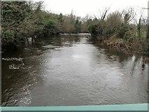 J3731 : The swollen Shimna River above the footbridge in Islands Park by Eric Jones