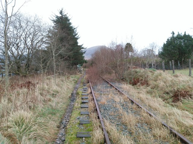 Overgrown railway