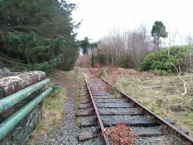 Overgrown trackbed