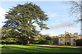 SP8402 : Hampden House & Cedar Tree by Des Blenkinsopp