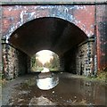 SJ9594 : The puddle under bridge #122 by Gerald England