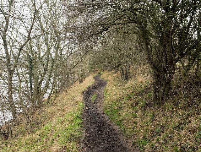 Hadrian's Wall Path heading west
