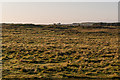 NU1338 : Towards Ross Links by Ian Capper