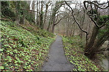 NS2209 : Path to Culzean Castle by Billy McCrorie