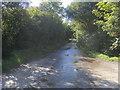 SW7617 : Lane heading to Pednavounder by Shaun Ferguson