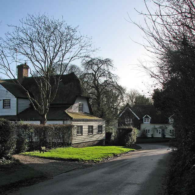 Therfield: winter sunlight