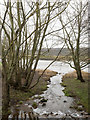 NZ1665 : Confluence of Reigh Burn and River Tyne by Trevor Littlewood