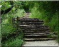 SK1451 : Steps leading up to Lover's Leap by Mat Fascione