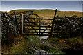 SD8487 : Gate across the Pennine Way by Chris Heaton