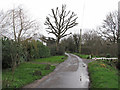 TM4496 : Low Road, Haddiscoe by Roger Jones