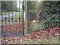 SO8463 : Nineteenth century benchmark at Ombersley Court by Shantavira