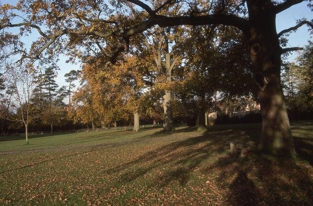 Goffs Park in 1988 (4)