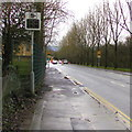 ST2990 : Your speed indicator, Bettws Lane, Newport by Jaggery