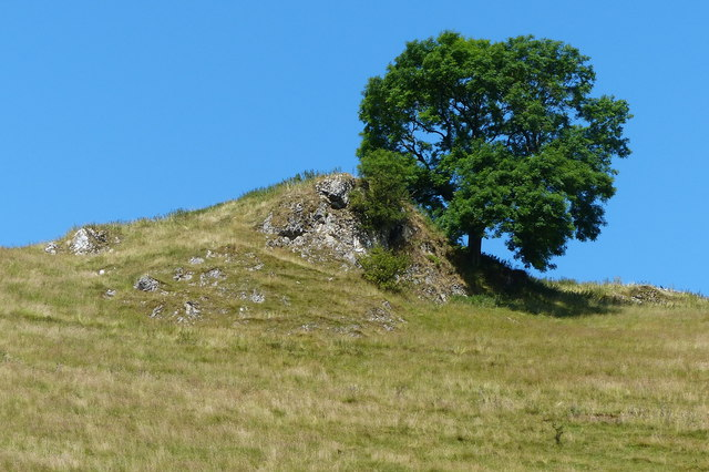 Tree and rocky crag overlooking Mill Dale