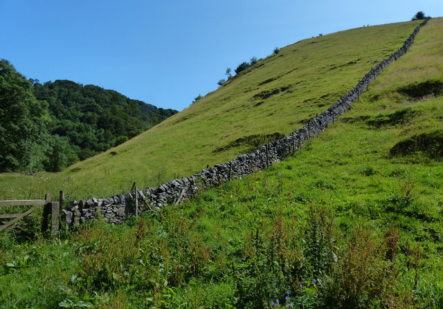 Dry stone wall at Mill Dale