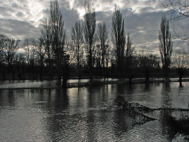 The Cam at Newnham in January