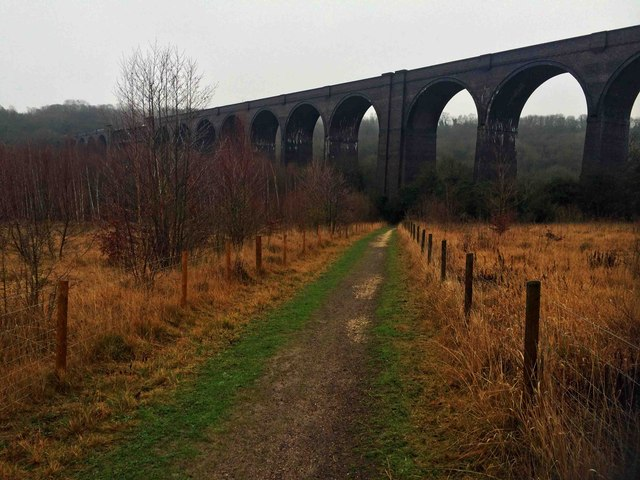 Conisbrough viaduct from the Trans Pennine Trail