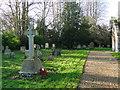 TG3009 : Great Plumstead War Memorial by Adrian S Pye