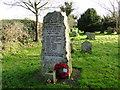 TM2095 : Tasburgh War Memorial by Adrian S Pye