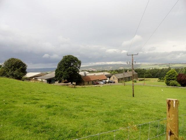 Cut Thorn Farm