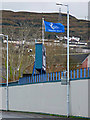 NS2975 : Scottish Football League 1 Winners Flag by Thomas Nugent