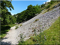 SK1357 : Limestone scree slope in Wolfscote Dale by Mat Fascione