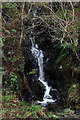 SD3493 : Mini waterfall in Grizedale Forest by Kate Jewell