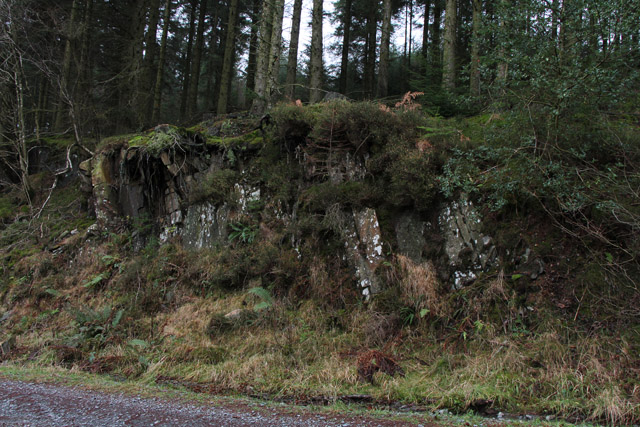 By the Bogle Crag trail, Grizedale Forest