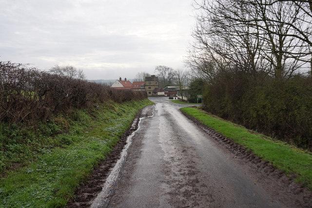 Lingholme Lane towards Lingholme Farm