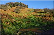 SE7296 : Hillside below Bell Top by Ian Taylor