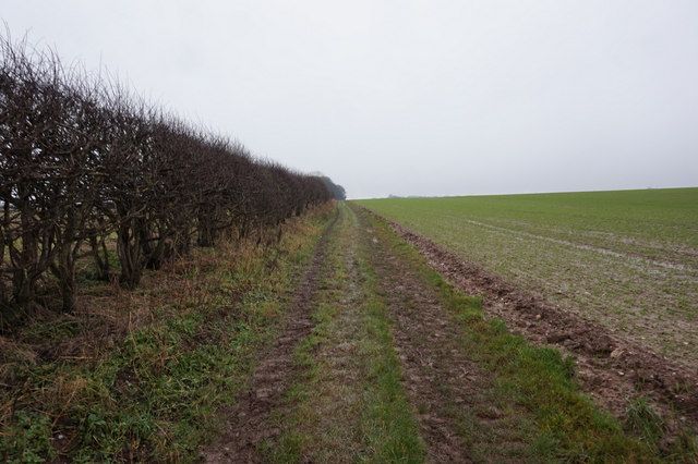 The Wolds Way towards  Stocking Dale