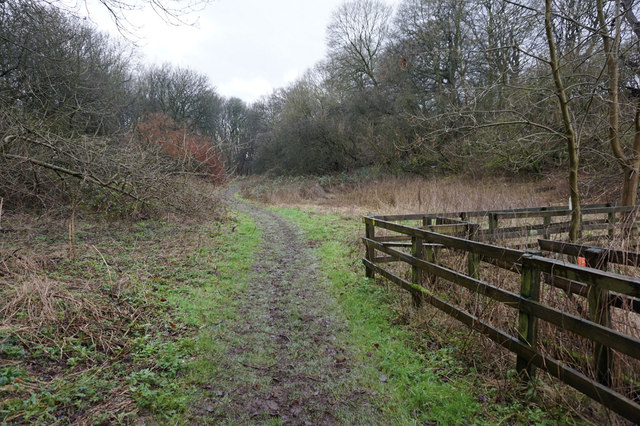 The Wolds Way at Stocking Dale