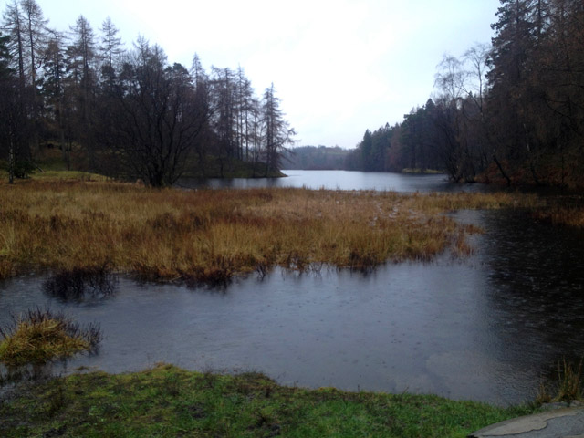 At the north end of Tarn Hows