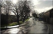 SX9066 : Barton Hill Road, Torquay by Derek Harper