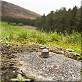 J3021 : Survey Mark, Silent Valley by Rossographer