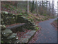 SD3393 : 'Pacus Seat', a Grizedale Forest sculpture by Karl and Ali