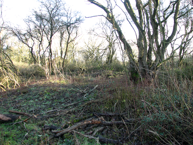 The old Technical site at RAF Seething