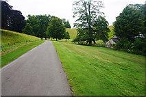 SP4317 : Road in Blenheim Park by Bill Boaden