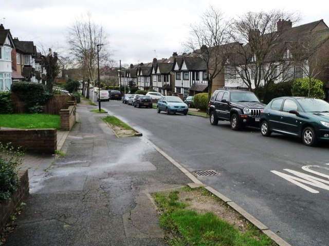 Woodberry Way, Chingford Green [2]