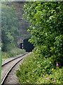 SJ9852 : Cheddleton Tunnel portal near Leekbrook, Staffordshire by Roger  Kidd