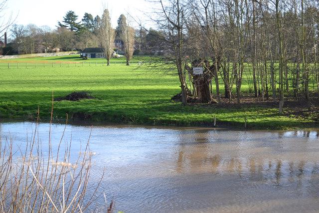 Sunshine on the floodplain to end the year, Myton, southeast Warwick