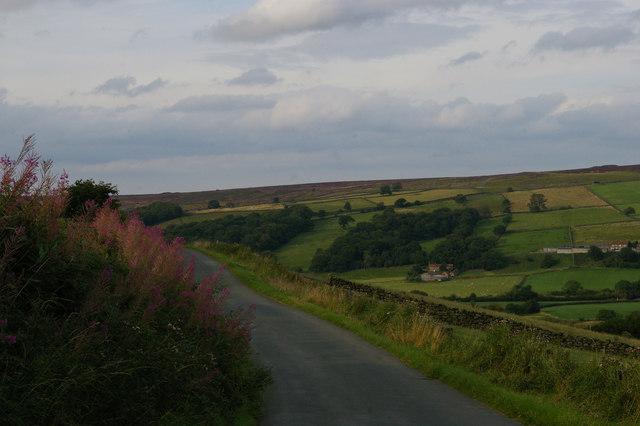 Castle Lane, Little Fryup Dale