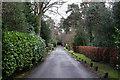 SU9465 : Woodhall Lane, Windlesham by Peter Trimming