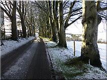 H5064 : Wintry along Meenmore Road by Kenneth  Allen