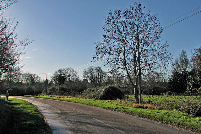 Little Shelford: bright cables